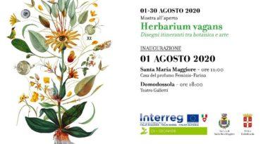 """mostre // """"HERBARIUM VAGANS"""" mostra itinerante tra botanica e arte a Domodossola e Santa Maria Maggiore… da SABATO 1 AGOSTO"""